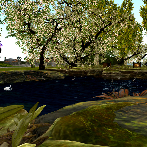 Home Garden Expo 2013 Relay For Life Blithe Magazine